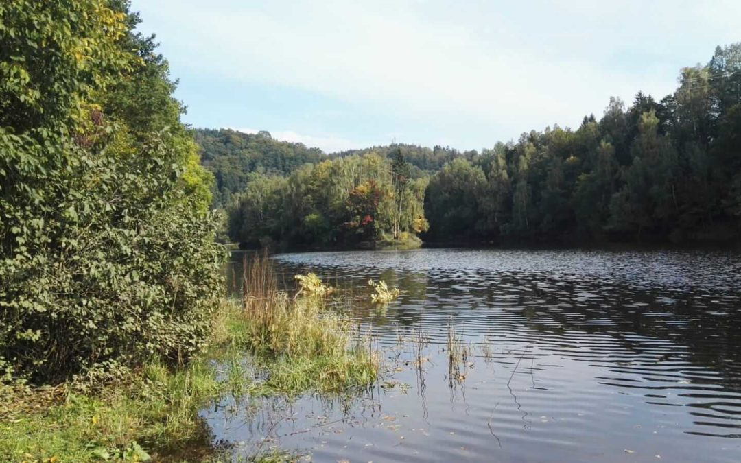 Rundweg um den Oderteich nahe St.- Andreasberg
